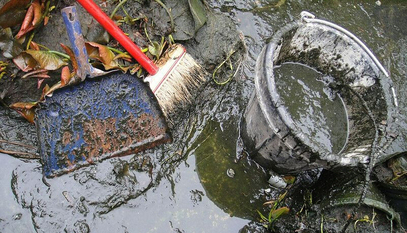 Clear Ponds – Keep your pond clear with Green and Red Lightning Blanketweed  and Sludge Clearers